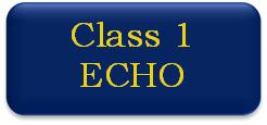 Class 1 ECHO button
