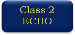 Class 2 ECHO button