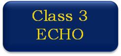 Class 3 ECHO button