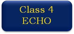 Class 4 ECHO button