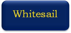 Whitesail button
